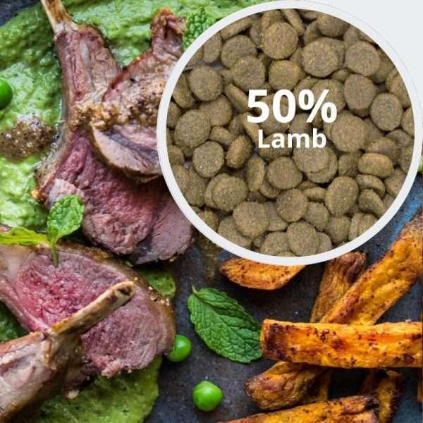 Behavioural Balance: Lamb, Sweet Potato and Mint
