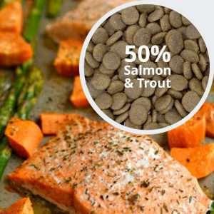 Behavioural-Balance-Salmon-Trout-Sweet-Potato-Asparagus