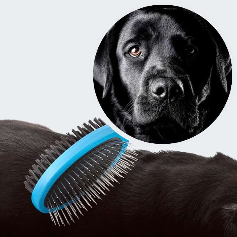 double sided dog brush